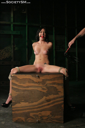 Sweet brunette tied, gagged, roped and s - XXX Dessert - Picture 4