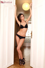 erotic brunette black lingerie