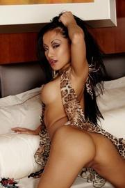 tempting ebony tigress hot