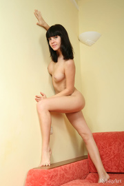 brunette gets nude stylish