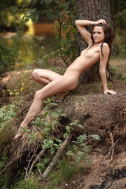innocent brunette chick the