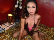 asian transgender naughtyjasminxxx like