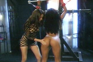 babe fishnets punishes spanks