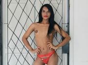 latin transgender vanezzats like