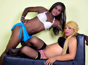 latin young transgender latintsbigcocks