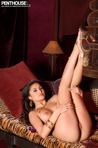 luscious hottie brown underwear