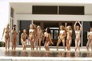 luscious hotties black bikini